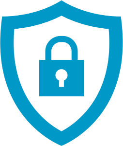 icon-secure-and-protect